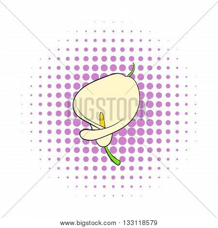 Calla flower icon in comics style isolated on white background