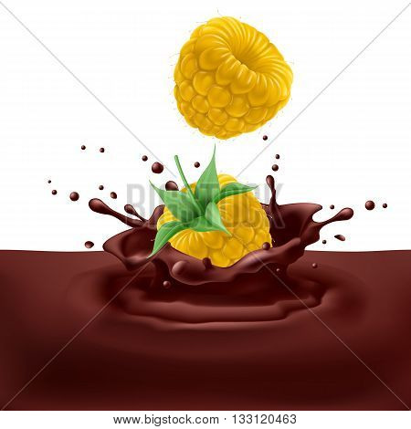 Appetizing yellow raspberries dipping into chocolate with splashes