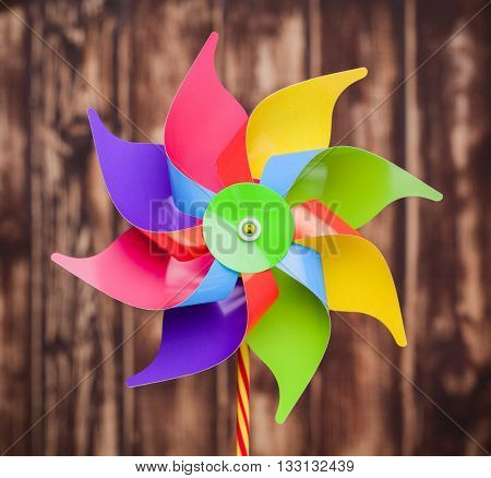 Colorful pinwheel on wooden background