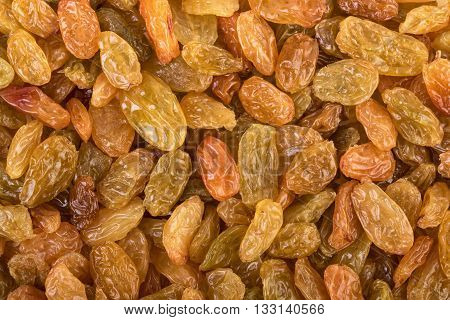 Raisins background. Dried grapes in close up.