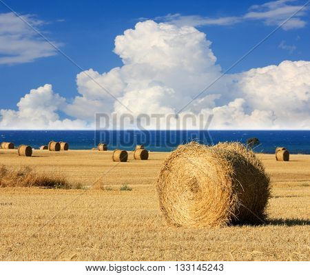 hay roll on meadow under nice clouds in sky