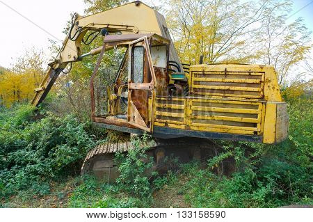 Old excavator rusting in a forest