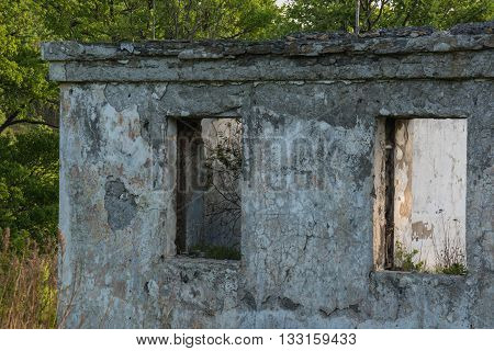 Abandoned concrete building in the woods. Closeup.