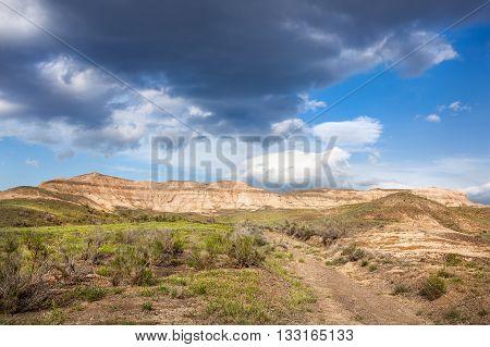 Spring time in the desert of Kazakhstan