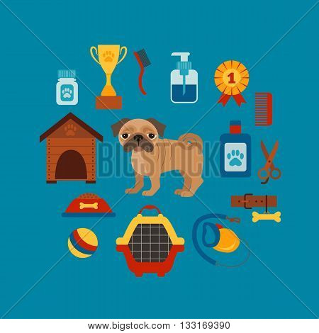 Pet training concept with dog care elements. Pet training:  bowl, collar, leash. Pet training  poster vector illustration. Colorful pet training concept in flat style. Dog care pet training concept