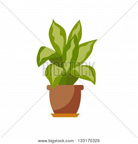 Potted plant isolated. Vector flat plant pot illustration. Concept of flat flower pot. Colorful plant in pot for your design. Home flower pot icon