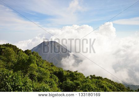 The perfect peak of the active and young Izalco volcano seen from a view point in Cerro Verde National Park in El Salvador, nearly covered with thick white clouds