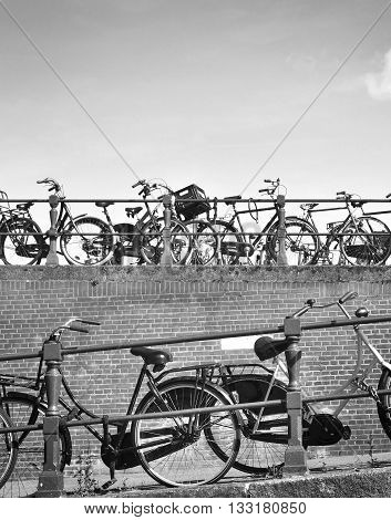 Bicycles in Amsterdam city. Urban scene with bicycles in a row. Black and white toned image with copy space.
