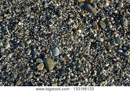 The natural background. Pebble beach at sunset. Large and small pebbles of different sizes and colors on the beach.
