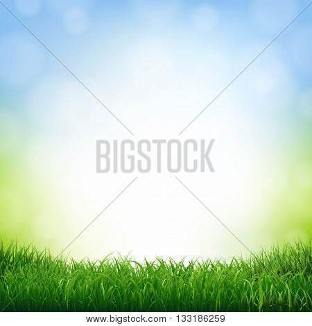 Nature Background With Grass Border, With Gradient Mesh, Vector Illustration