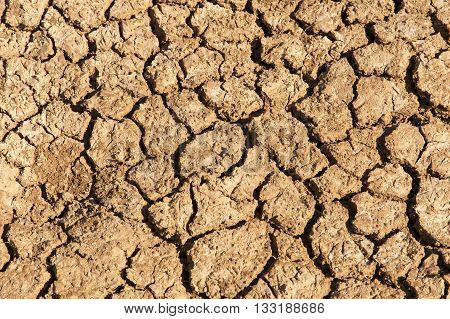 Soil Cracks Desert Sands Water Evaporation Stagnation And Global Warming Large Cracks In Clay Soil D