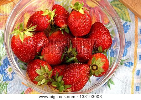 Fresh crop of strawberry from the Russian giving in a transparent salad bowl