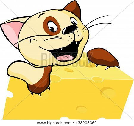 funny cat hold cheese - vector illustration isolated on white background