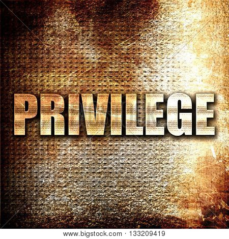 privilege, 3D rendering, metal text on rust background