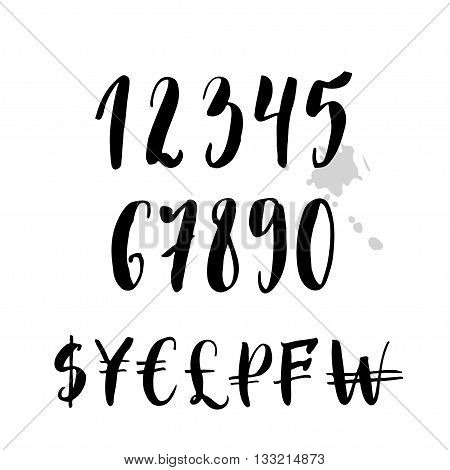 Vector numbers and money signs in calligraphic style. Handwritten symbols isolated on white background.