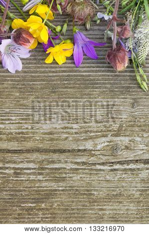 Summer beautiful wildflowers atop rough wooden background