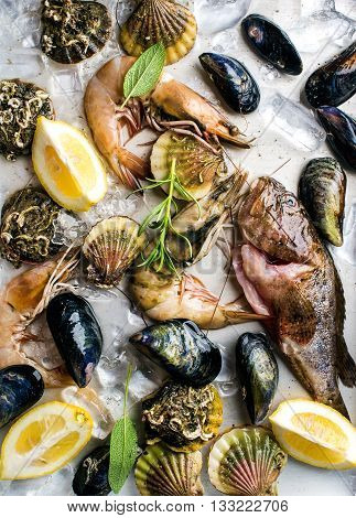 Fresh seafood with herbs and lemon on ice. Prawns, fish, mussels and scallops over steel metal background. Top view, vertical