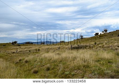 Rural landscape - paddock in foreground with mountains in the distance and an overcast, blue sky