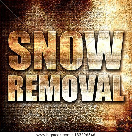snow removal, 3D rendering, metal text on rust background