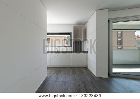 Interior of empty apartment, wide room with domestic kitchen