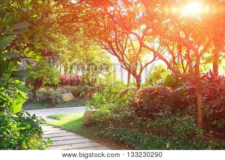 garden of a residence community in the evening against the rising sun