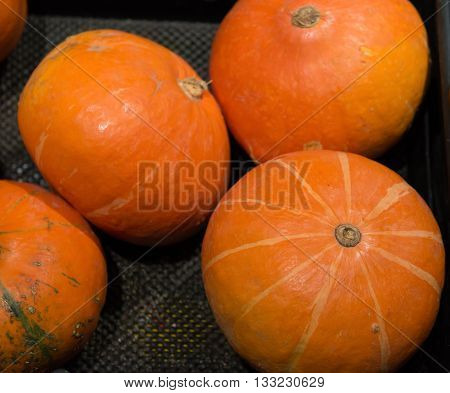 fresh pumpkins on sale in a super market