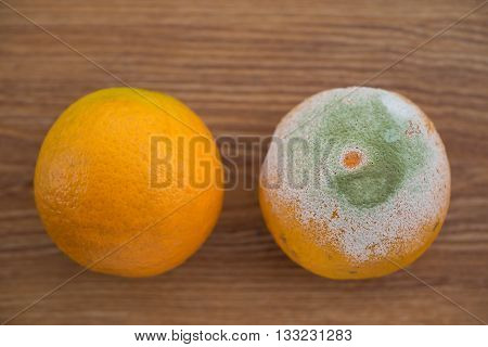 a rotten orange and a good one