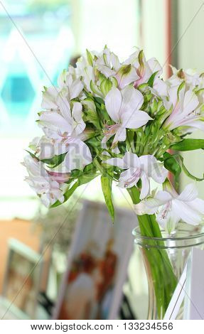 bouquet of white lilly flower in the jar