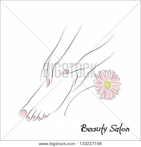 Pedicure banner with female feet and pink nails. Foot spa vector illustration or foot massage logo. Design spa template with gerbera flower. Body care, health and wellness concept