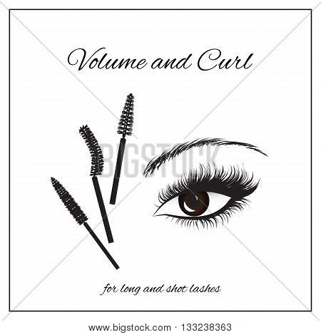 types of mascara brushes and makeup classification