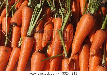 Fresh carrot in the maket, Carrot. Fresh Carrots bunch. Raw fresh organic orange carrots. Healthy vegan vegetable food. Fresh Vegetable.