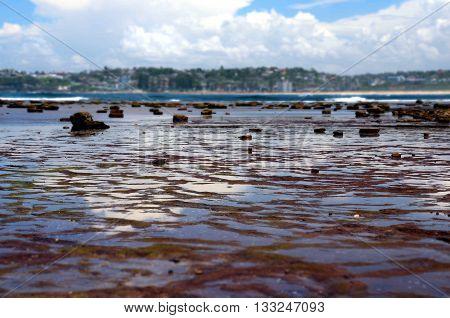 Low tide at Long Reef Headland (Sydney, Australia)