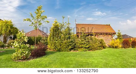 Backyard of a family house. Landscaped garden green mown grass, plants and trees, wood shelter, barbecue.