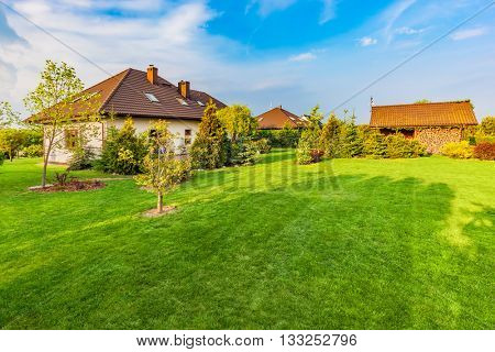 Backyard of a family house. Landscaped garden with spacious area of green mown grass, plants and trees, wood shelter, barbecue.