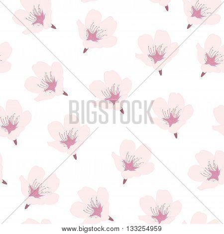vector illustration seamless pattern with pink flowers sakura on white background top view / Sakura seamless pattern