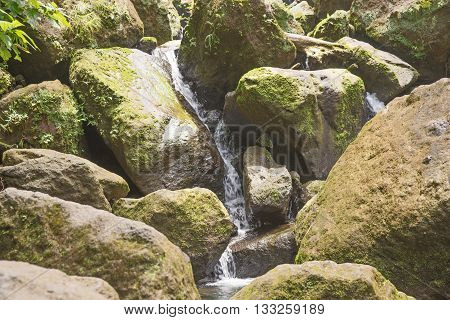 Mountain stream among the green mossy stones