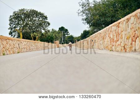 Dog Walking Towards Camera On Country Road.