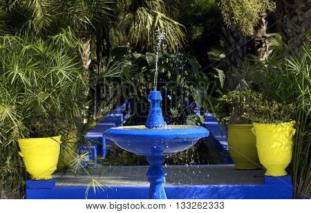 horizontal picture of an exotic garden in morroco