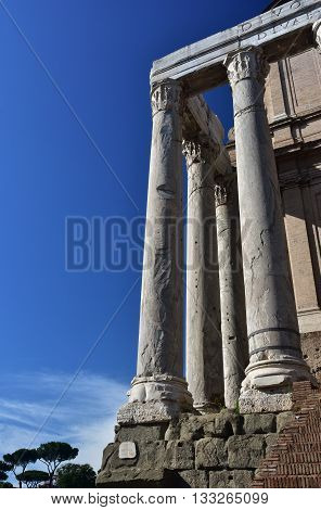 Columns from the ancient Temple of Antoninus and Faustina in Roman Forum