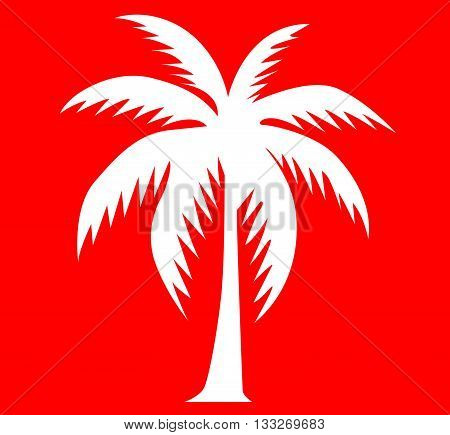 vector icon illustration of palm tree that represents vacation