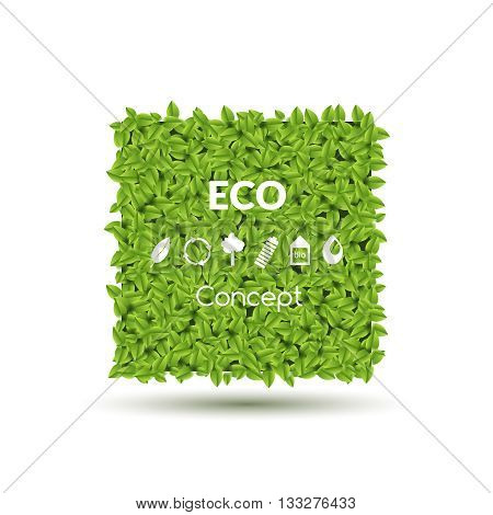Summer Spring Green Square or Bubble for speech, Green leaves and Eco icons set. Vector illustration