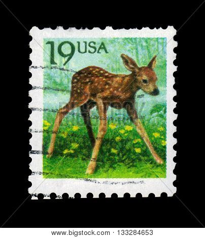 UNITED STATES OF AMERICA - CIRCA 1991: A stamp printed in USA shows small fawn (Capreolus capreolus), circa 1991