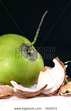 Single Coconut With Outer Shell On White Background