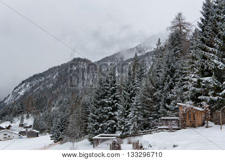 Small Wooden Rural Farm Shack at Edge of Thick Evergreen Forest on Snow Covered Mountainside with Alp Peaks in Background on Overcast Day