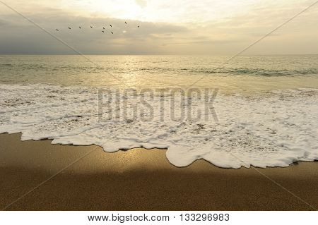 Beach sunset is a flock of birds flying in the ocean sky as a gentle wave rolls to the shore.