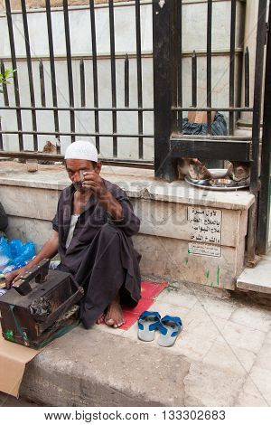 Cairo, Egypt- July 20 2009: Shoeshiner drinking tea and cats eating in the background in a street in Cairo.