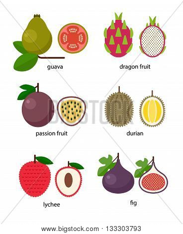 Set of exotic fruit: guava, passion fruit, dragon fruit, lychee, durian, fig