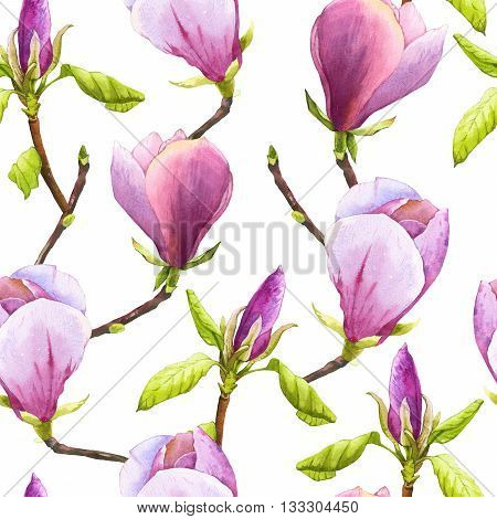 Spring Seamless Background With Watercolor Magnolia.