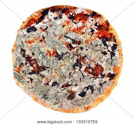 Moldy Pizza