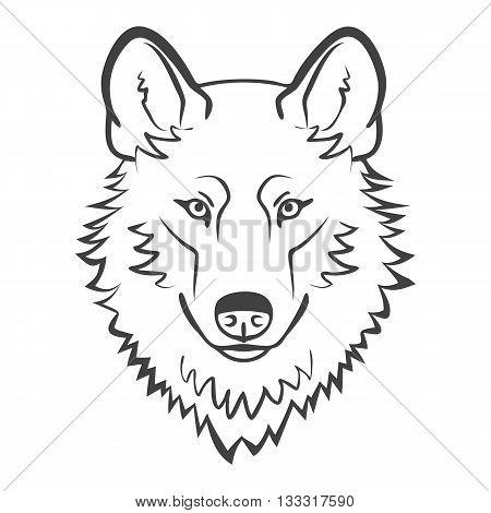 Wolf head Logo Mascot Emblem. Realistic wolf